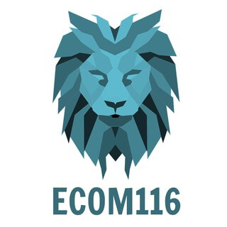 Ecom Courses