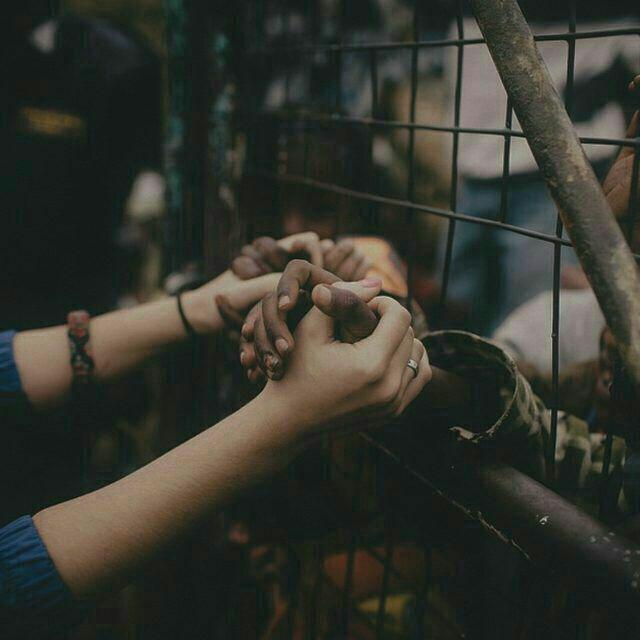 you my dream