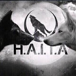 H.A.I.T.A.???⚔❤